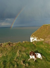 Rainbow over Flamborough Head